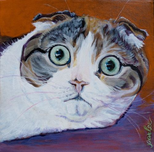painting of crazy scottish fold cat katamari by parlee chambers