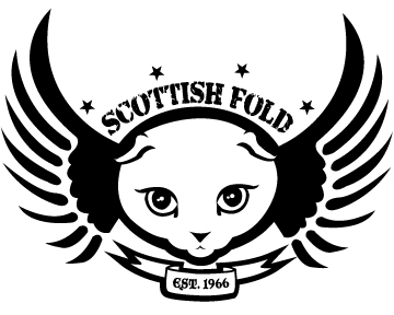 Scottishfolddesign